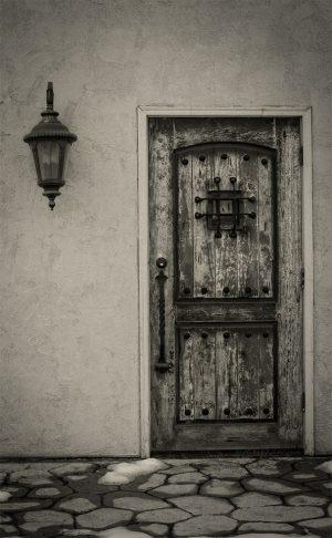 D'Vine Door