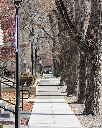 Downtown Carson City 3