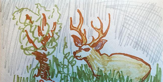 deer-for-card-sketch-2019